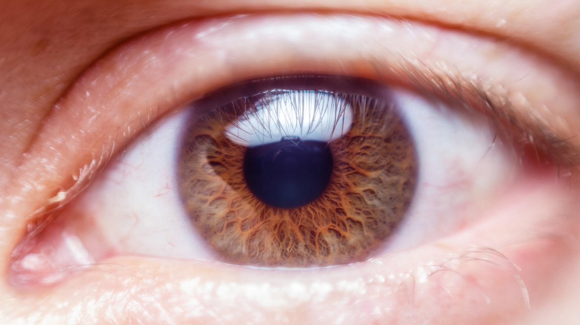 human-eye-close-up
